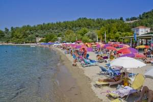 Choose the best hotels and apartments in Thassos, hotels in Thassos, beaches in Thassos.